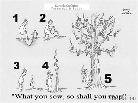 As you sow so shall you reap essays assignments jpg 800x600