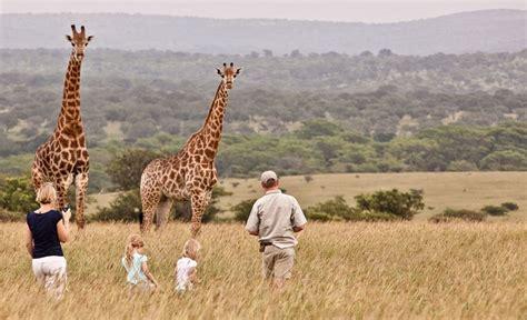 How big is a baby giraffe jpg 700x426